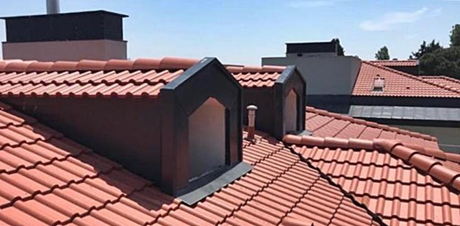 Farklı Çatı Modelleri ve uygulama Örnekleri..
