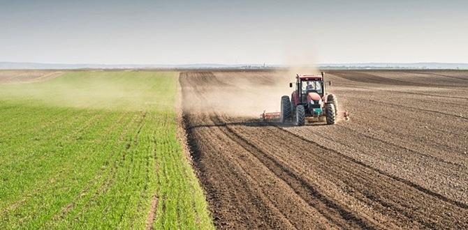 Tarım arazilerine yatırımcıların ilgisi arttı!