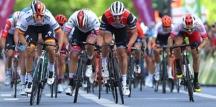 Trentino şehrinde yapılacak Yol Bisikleti Şampiyonası Koronavirüs nedeni ile Ertelendi