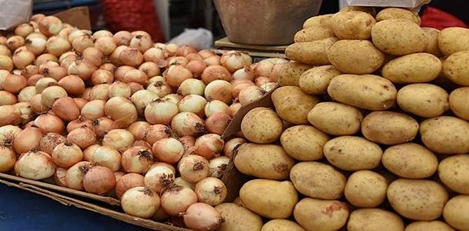 Yerinde 1 liraya alına patates soğan, Marketlerde 4-6.5 lira Satılıyor! Kim bu vurguncular!!