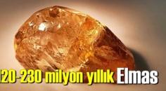 120-230 milyon yıllık ve 236 karatlık Elmas bulundu.