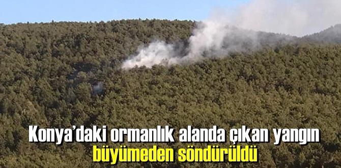 Konya'nın Hüyük ilçesinde'ki ormanlık alanda çıkan yangın söndürüldü!