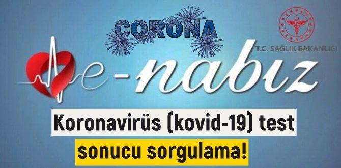 Koronavirüs (kovid-19) test sonucu sorgulama!Corona virüs test sonucu sorgulamaları!