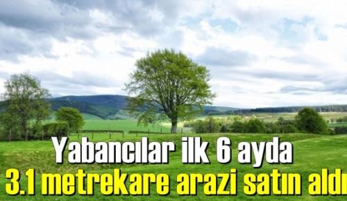 Türkiye'de yabancıların Toprak alımı sürüyor!
