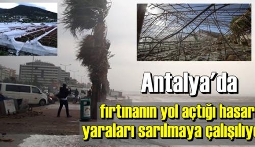 Antalya'da fırtınanın yol açtığı hasarın yaraları giderilmeye çalışılıyor