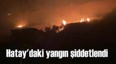 Hatay'daki yangın şiddetlendi, Azganlık Mahallesi kısmen boşaltıldı.
