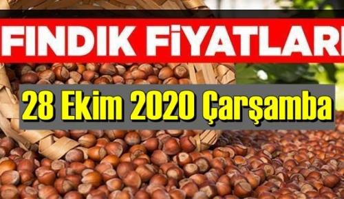 28 Ekim Çarşamba Türkiye günlük Fındık piyasası, Fındık bugüne nasıl başladı.