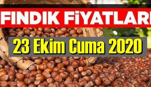 23 Ekim Cuma Türkiye günlük Fındık piyasası, Fındık bugüne nasıl başladı.
