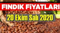 Fındık fiyatları/ 20 Ekim 2020 Salı/ il il günlük fındık fiyatları piyasası!