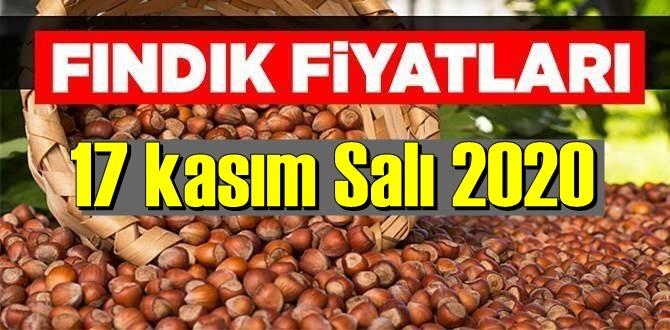 17 kasım Salı 2020 Türkiye günlük Fındık piyasası, Fındık bugüne nasıl başladı