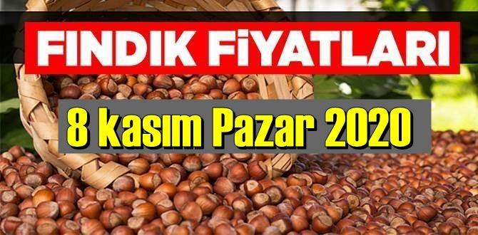 8 kasım Pazar 2020 Türkiye günlük Fındık piyasası, Fındık bugüne nasıl başladı