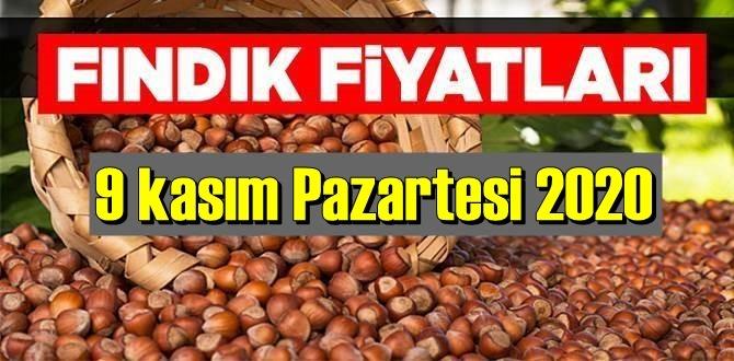 9 kasım Pazartesi 2020 Türkiye günlük Fındık piyasası, Fındık bugüne nasıl başladı