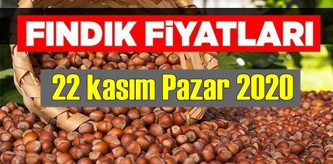 22 kasım Pazar 2020 Türkiye günlük Fındık piyasası, Fındık bugüne nasıl başladı