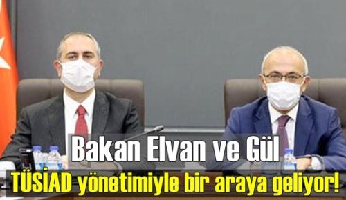 Bakan Elvan ve Gül, TÜSİAD yönetimiyle bir araya geliyor!