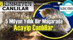 İlginç ama gerçek: 5 Milyon Yıllık Bir Mağarada Acayip Canlılar