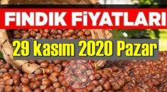29 kasım 2020 Pazar Türkiye günlük Fındık piyasası, Fındık bugüne nasıl başladı