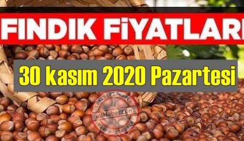 30 kasım 2020 Pazartesi Türkiye günlük Fındık piyasası, Fındık bugüne nasıl başladı