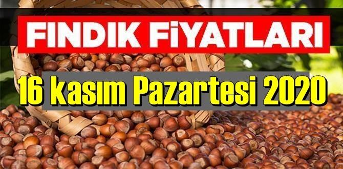 16 kasım Pazartesi 2020 Türkiye günlük Fındık piyasası, Fındık bugüne nasıl başladı
