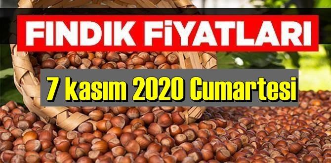 7 kasım Cumartesi 2020 Türkiye günlük Fındık piyasası, Fındık bugüne nasıl başladı