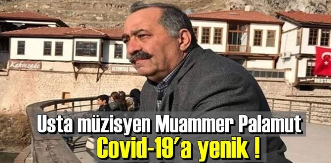 Usta müzisyen Muammer Palamut Covid-19'dan vefat etti.