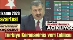 23 kasım 2020 Pazartesi/ Türkiye Koronavirüs veri tablosu