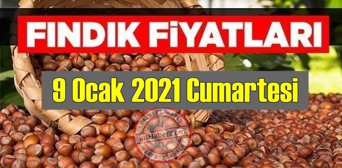9 Ocak 2021 Cumartesi Türkiye günlük Fındık fiyatları, Fındık bugüne nasıl başladı