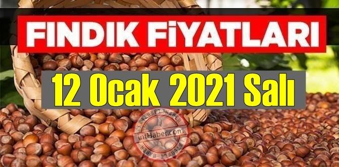 12 Ocak 2021 Salı Türkiye günlük Fındık fiyatları, Fındık bugüne nasıl başladı