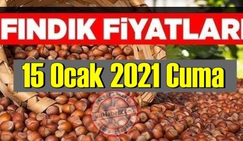 15 Ocak 2021 Cuma Türkiye günlük Fındık fiyatları, Fındık bugüne nasıl başladı
