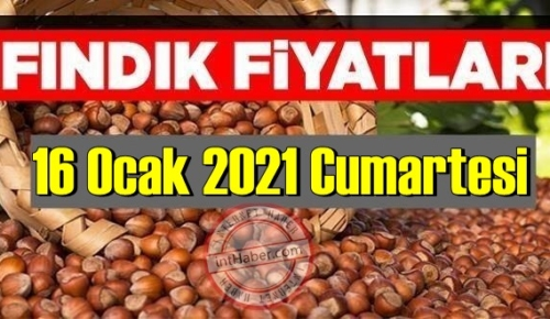 16 Ocak 2021 Cumartesi Türkiye günlük Fındık fiyatları, Fındık bugüne nasıl başladı