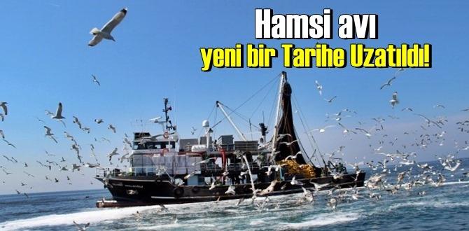 Yeni açıklandı,Hamsi avı tekrar yeni bir Tarihe Uzatıldı!