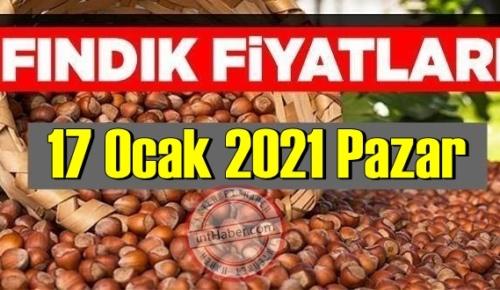 17 Ocak 2021 Pazar Türkiye günlük Fındık fiyatları, Fındık bugüne nasıl başladı