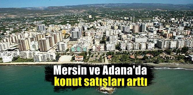 2020 yılında en çok konut satılan 6'ncı şehir Mersin olurken Adana, 12'nci sırada yer aldı