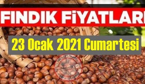 23 Ocak 2021 Cumartesi Türkiye günlük Fındık fiyatları, Fındık bugüne nasıl başladı