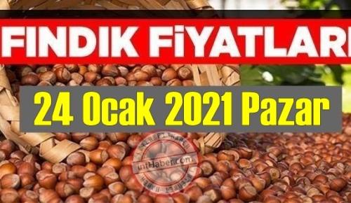 24 Ocak 2021 Pazar Türkiye günlük Fındık fiyatları, Fındık bugüne nasıl başladı