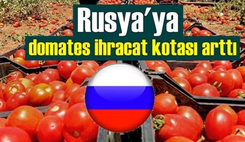 Rusya'ya domates ihracat kotası artırıldı