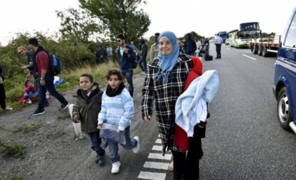 Danimarka nın hedefi sıfır sığınmacı #4