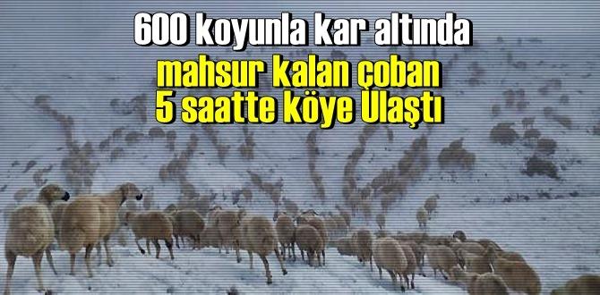 Kötü hava şartlarında yaylada mahsur kalan çoban, koyun sürüsüyle güçlükle köye ulaşabildi!