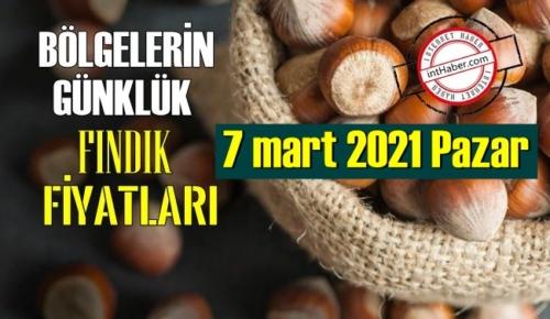 7 mart 2021 Pazar Türkiye günlük Fındık fiyatları, Fındık bugüne nasıl başladı