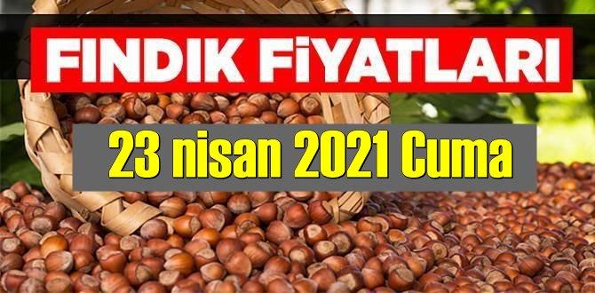 23 nisan 2021 Cuma Türkiye günlük Fındık fiyatları, Fındık bugüne nasıl başladı