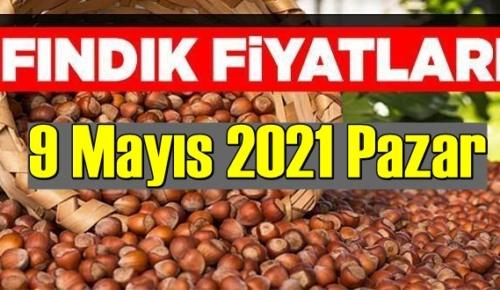 9 Mayıs 2021 Pazar Türkiye günlük Fındık fiyatları, Fındık bugüne nasıl başladı